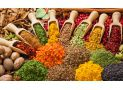 Culinary spices and herbs